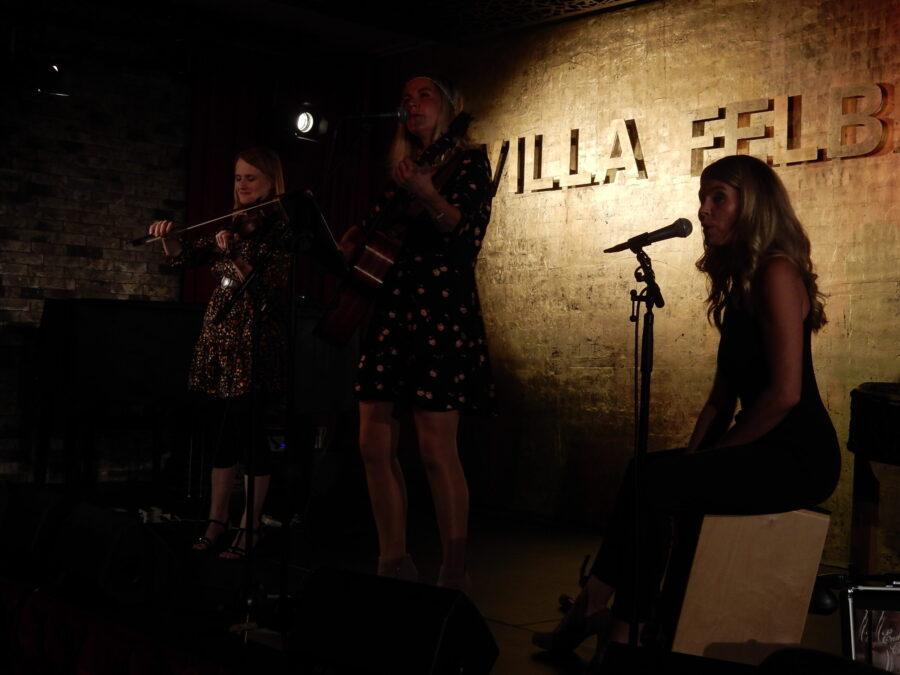 Villa Felber, ERmatingen, Akustikmusik, Folk, Swissfolk,  Enderlin Chicks
